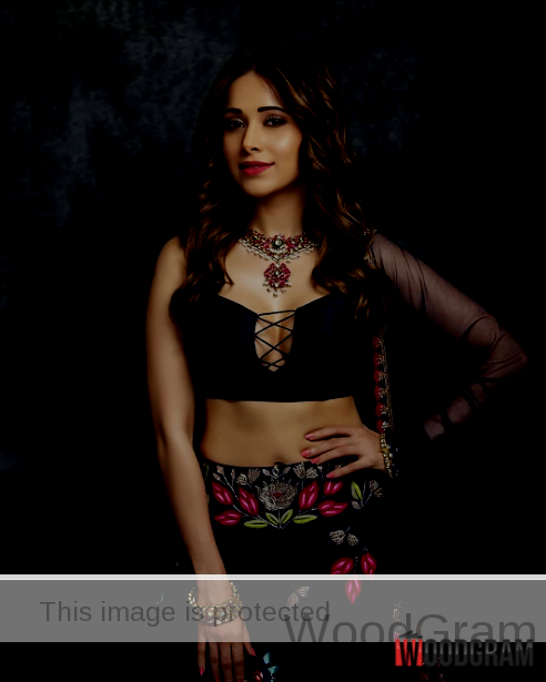 Bollywood Movies Actress Nushrat Bharucha