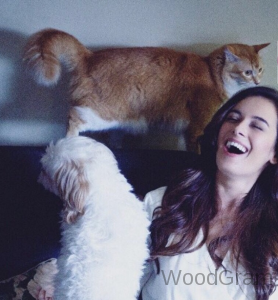 Evelyn Sharma With Her Pets