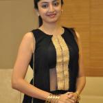 Tamil Telugu Actress Poonam Kaur
