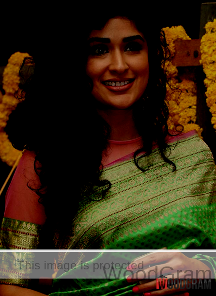 Bollywood Tollywood Actress Anjala Zaveri