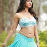 Nabha Natesh Hot Image